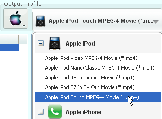 Select video format for iPod Touch